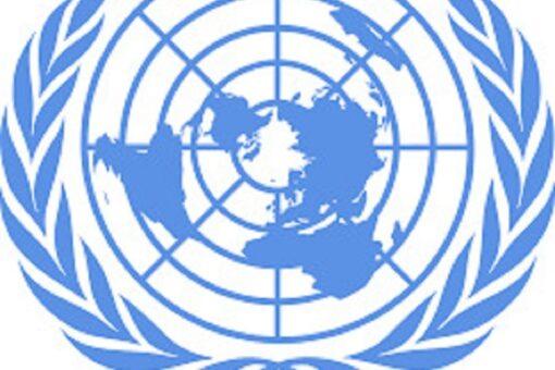 يوم تضامني مع السودان بالأمم المتحدة