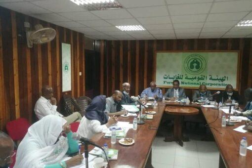 مجلس إدارة الغابات يؤكد قومية الغابات ودورها في الاقتصاد