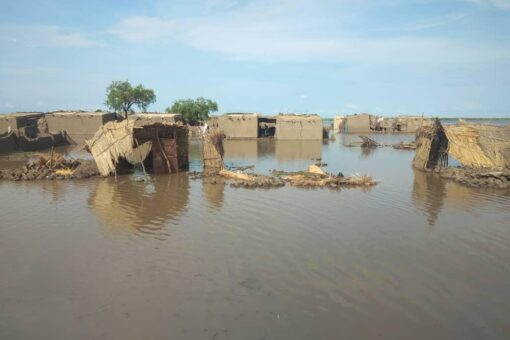 أكثر من 15ألف تضرروا بالسيول والفيضانات بوحدة جودة بالنيل الأبيض