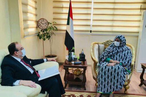 وزيرة الخارجية تشيد باستجابة مصر لدعم المتضررين جراء الفيضانات والسيول