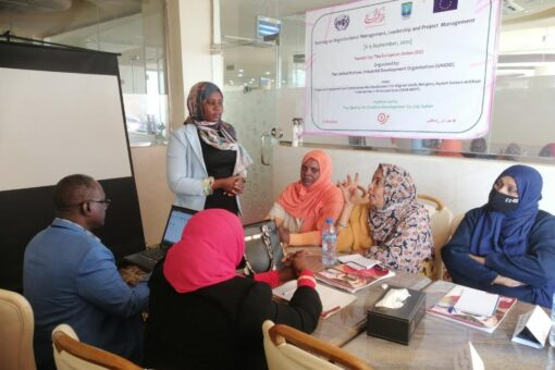 UNIDO and EU supported management capacity development of SudaneseGovernment Officials