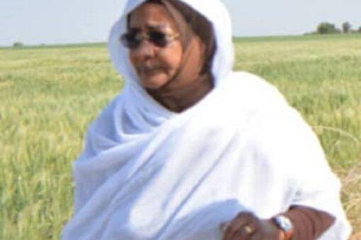 خطط طموحة لتأهيل القطاع الزراعى بولاية النيل الأبيض