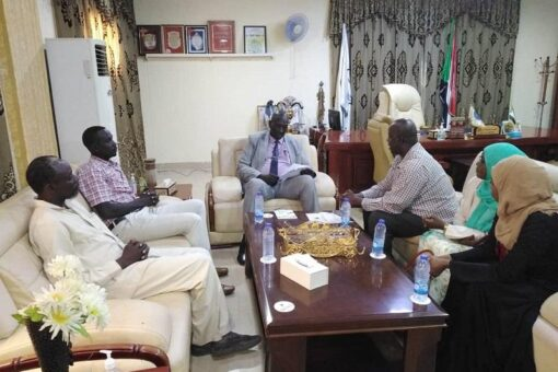 حاكم النيل الأزرق يوجه بإستمرارية الخدمات بكافة الصيدليات العاملة