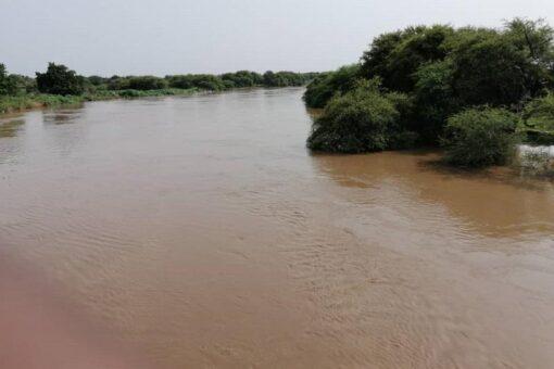 إنخفاض منسوب نهر الدندر