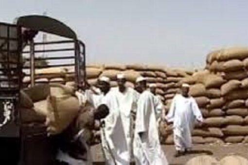 تذبذب في أسعار المحاصيل بأسواق القضارف