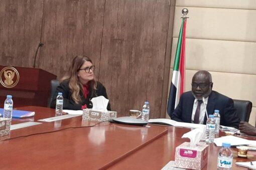 المالية ومملكة السويد يتفقان على دعم التنمية في السودان