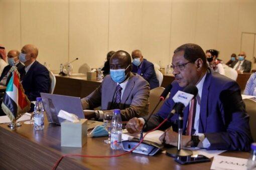 المنتدى الاقتصادي السوداني الروماني يؤكد توافر فرص الشراكة بين البلدين